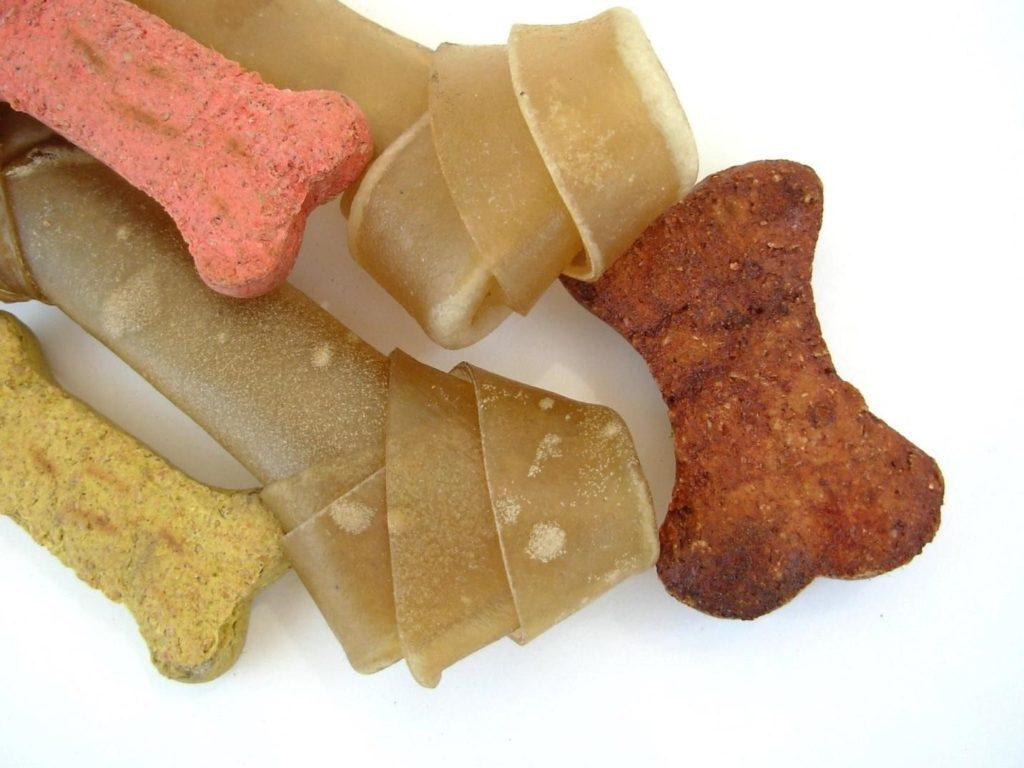 canine food