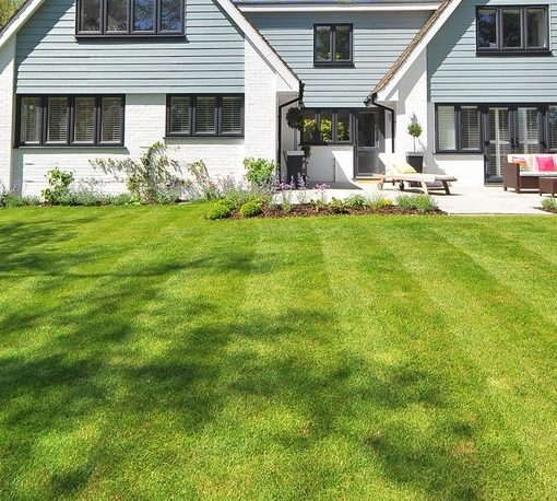 6 Best Lawn Care Hacks Experts Swear By