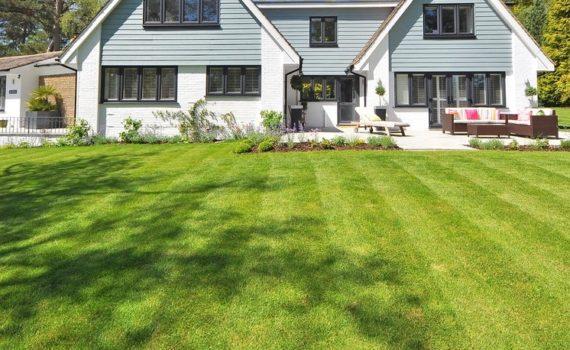 6 Best Lawn Care Hacks Experts Swear By