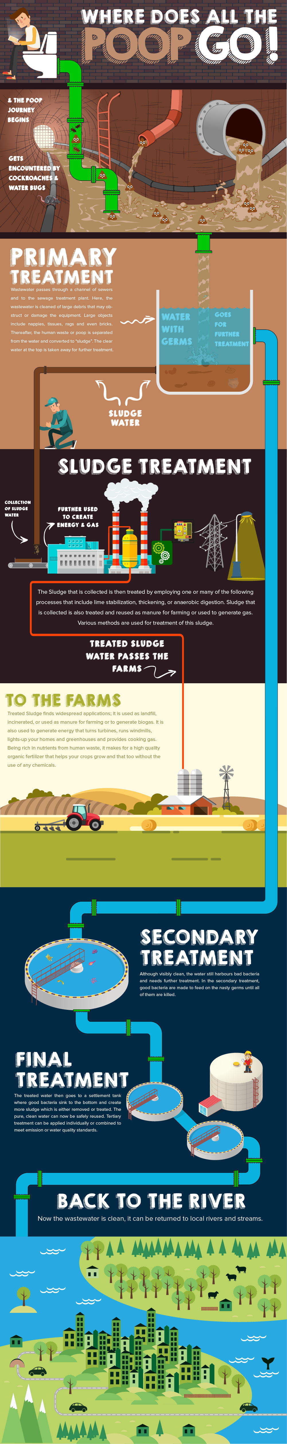 Where does poop go infographic