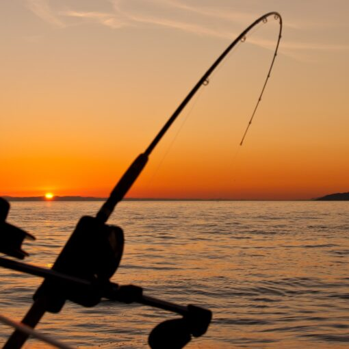 Our 5 Go-to Places for Family Fishing Vacations